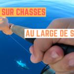 Pêche sur chasses au large de Sète - 23 septembre 2020